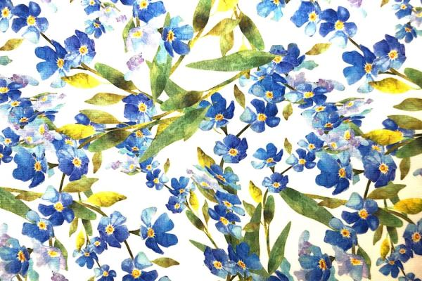 FORGET-ME-NOTS Jersey